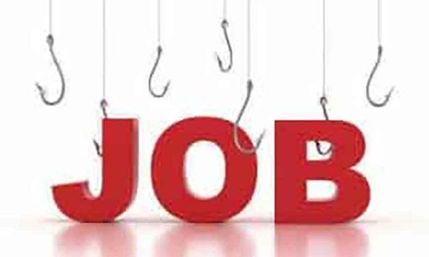 Job Loss And Future Plans
