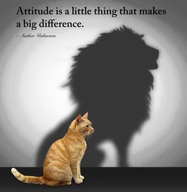 Positive Attitude: A Successful Formula