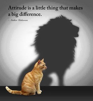 Positive Attitude: A Successful Formula