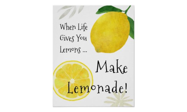 When Life Gives You Lemons, Learn How To Make Lemonade